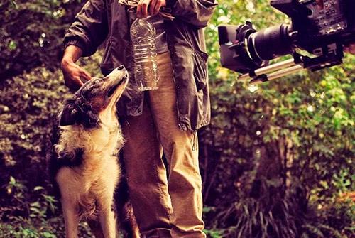 tournage-avec-chien